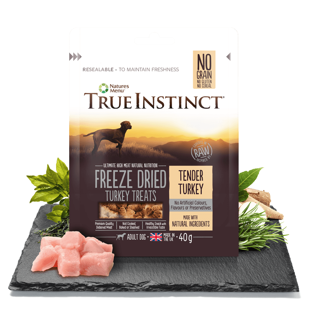 True Instinct Freeze Dried Treats Turkey 40g Bag