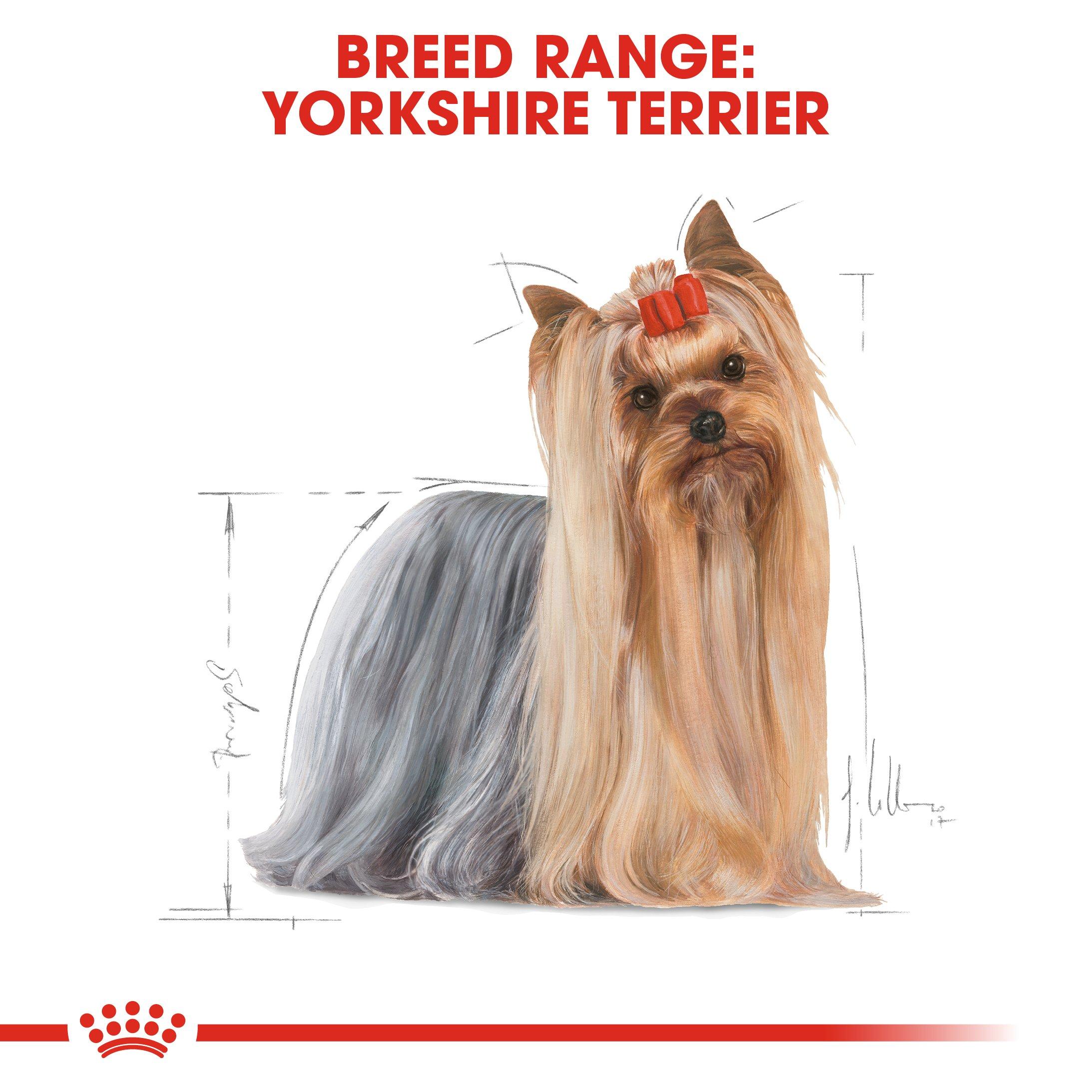 Royal Canin Yorkshire Terrier Adult 7 5kg Superpet Warehouse