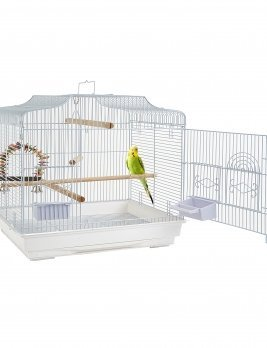 Enchantment Bird Cage