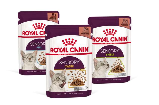 Royal Canin Sensory Packs